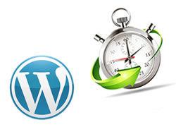 Maintenance de site WordPress